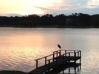 On the Lake (1/4)