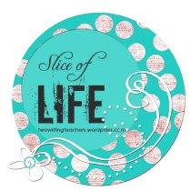 Slice of Life Challenge Day 4