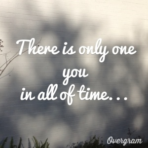shadow quote