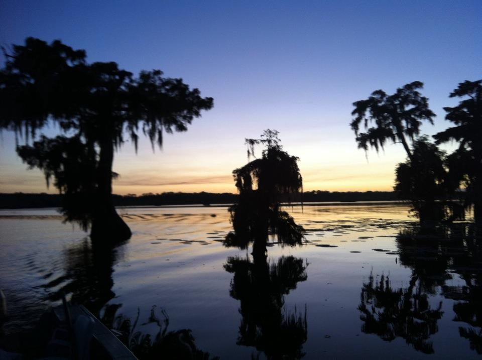 Short essay on the importance of wetlands