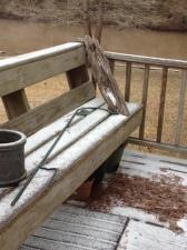 Snowy mix
