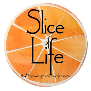 Slice of Life Day 18.  Join the Two Writing Teachers Slice of Life Challenge.