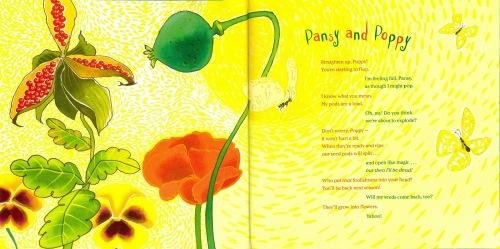 Pansy and Poppy VBPL