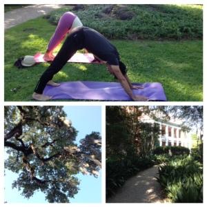 yoga at the Shadows