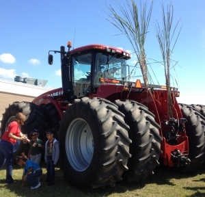 Sugarcane tractor on display at school.