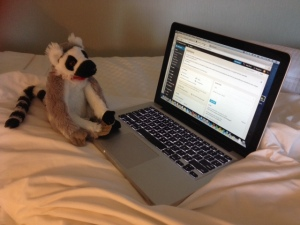 Emily snuck our class lemur, Jack, into my bag.  He is helping me write my speech.
