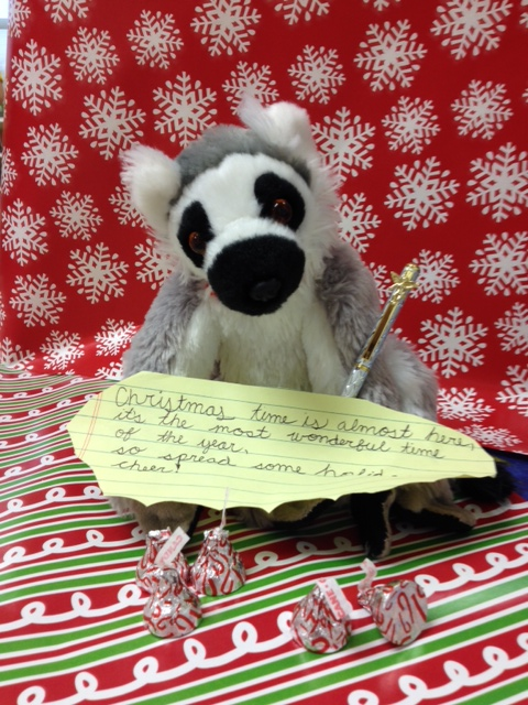 Jack the lemur wishes you a very merry Christmas!