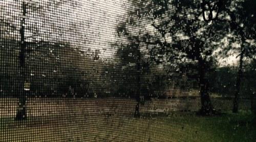 Through the screen door