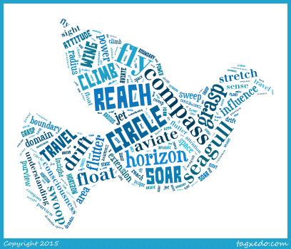 Fly word cloud 2