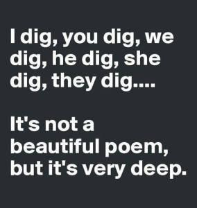 Dig poetry