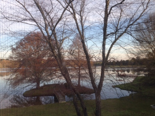 View of the lake from an upstairs window.