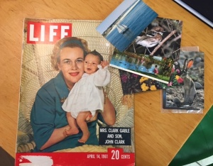 Antique store finds, a 1961 Life magazine and vintage postcards.