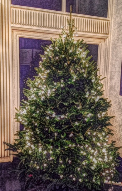 Christmas tree 15