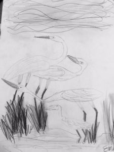 "Emily reproduced the cover of ""Over in the Wetlands"" in her drawing."