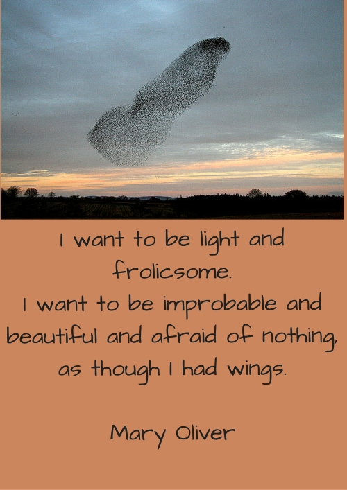 I want to be light and frolicsome.I want to be improbable and beautiful and afraid of nothing,as though I had wings. copy