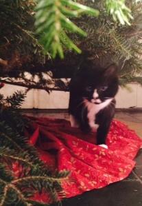 Mimi Christmas Tree