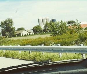 Illinois farmlands