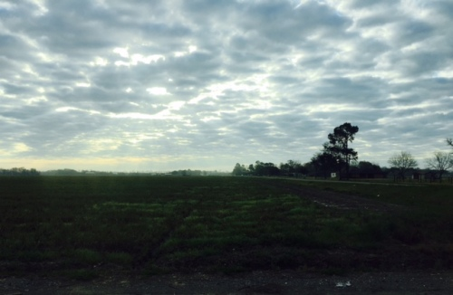 Sun beams through clouds