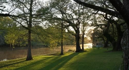 Spring sunrise by Margaret Simon