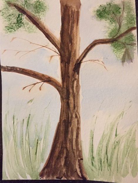 Watercolor pine tree by Margaret Simon
