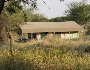 Serengeti tent camp