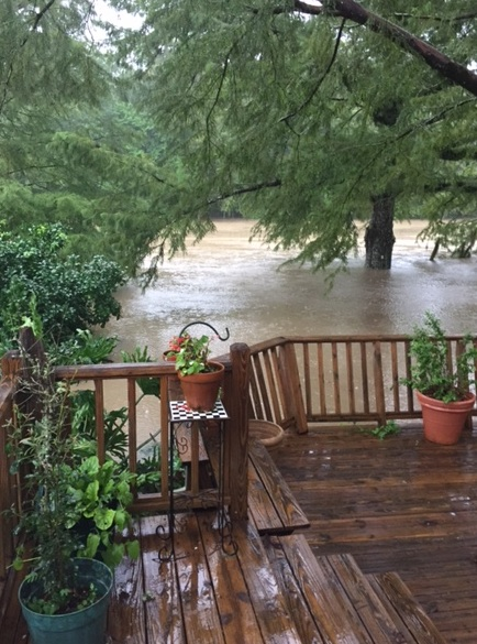 My backyard on Friday, Aug. 12, 2016.  The water has to cover the deck before it reaches the house.