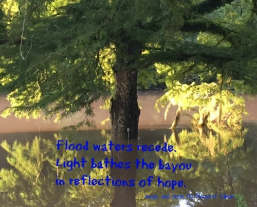 reflection flood poem