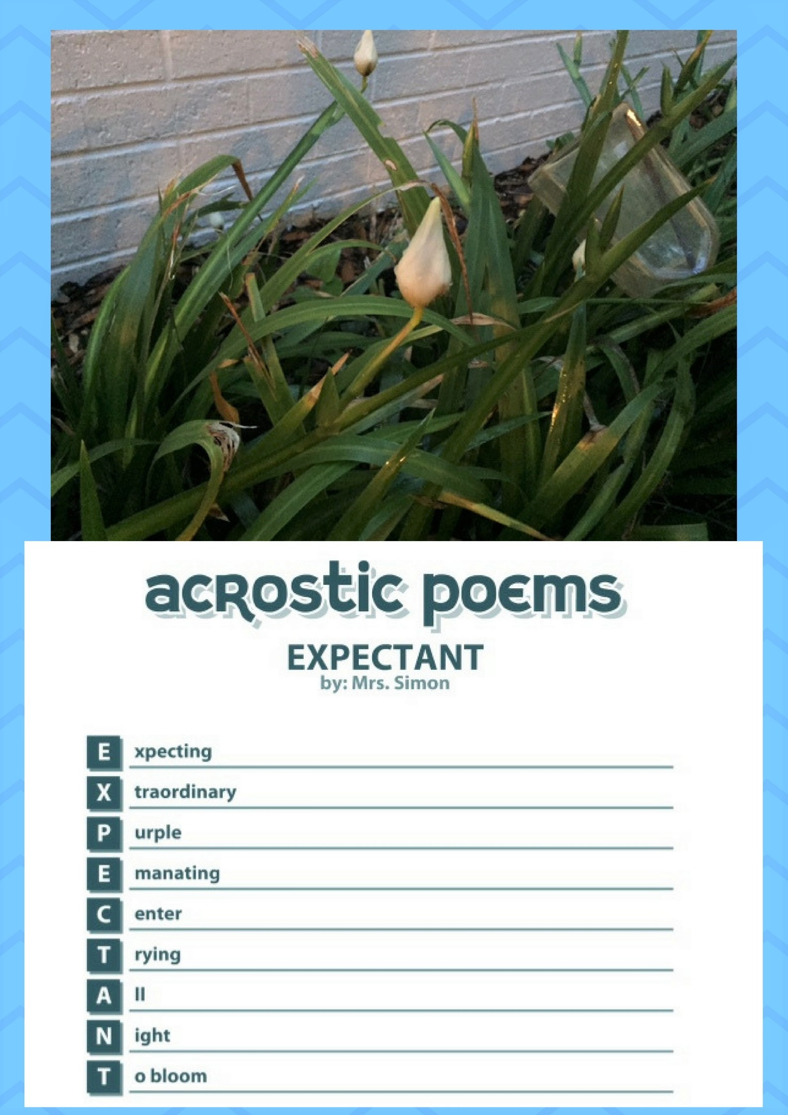 Acrostic Poetry Reflections On The Teche